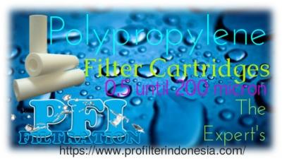 http://www.laserku.com/upload/PFI%20Polypropylene%20Filter%20Cartridges%20Indonesia_20190308095319_large2.jpg