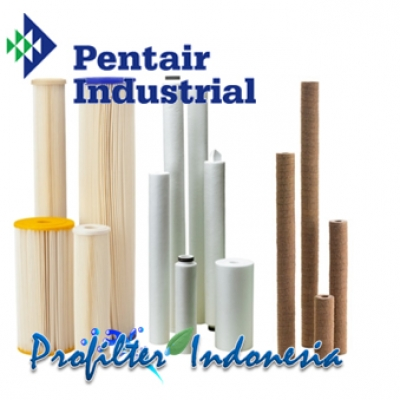 https://www.laserku.com/upload/Pentair%20Cartridge%20Filter%20Indonesia_20190225140954_large2.jpg