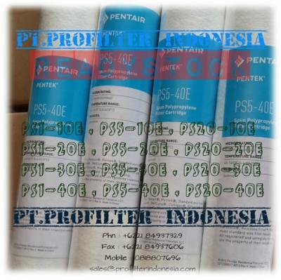 http://www.laserku.com/upload/d_Pentek%20PS5-40E%20PS5-30E%20PS5-20E%20Spun%20Bonded%20Polypropylene%20Cartridge%20Filter%20Indonesia_20150505025000_large2.jpg